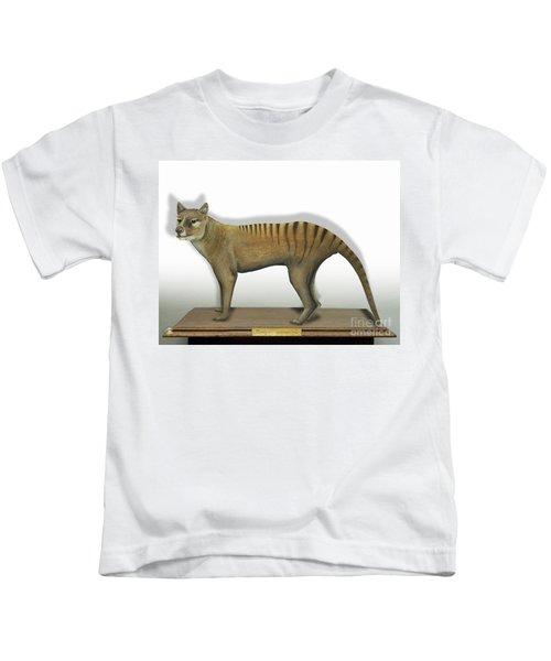 Tasmanian Tiger-thylacinus Cynocephalus-tasmanian Wolf-lobo De Tasmania-tasmanian Loup-beutelwolf    Kids T-Shirt