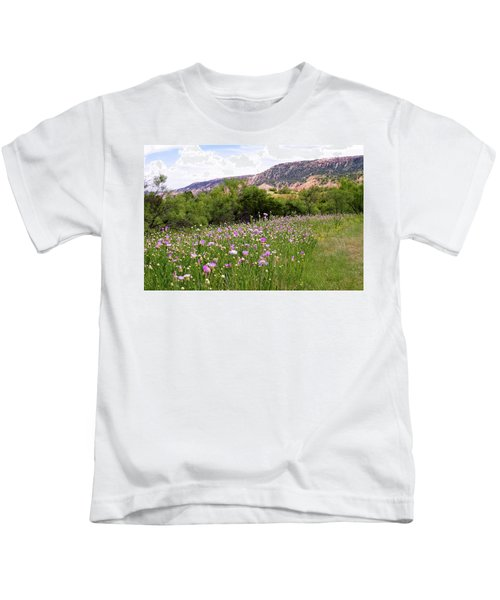 Thistles In The Canyon Kids T-Shirt