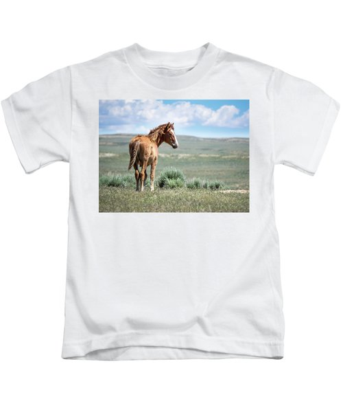 Wild Mustang Colt Of Sand Wash Basin Kids T-Shirt