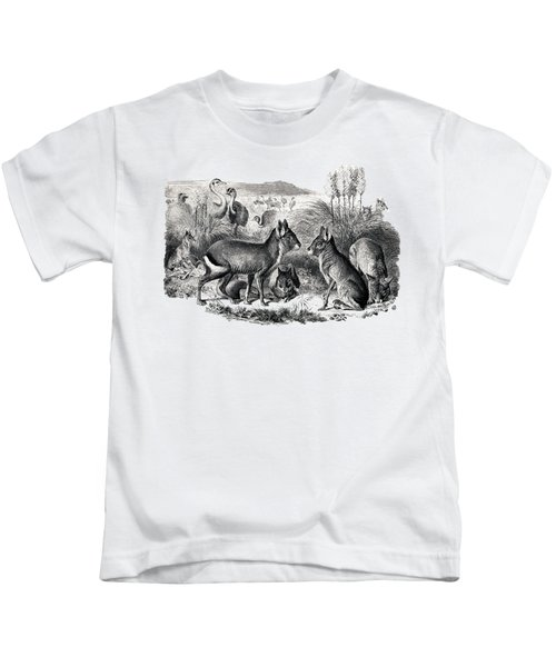 woodcut drawing of South American Maras Kids T-Shirt by The one eyed Raven