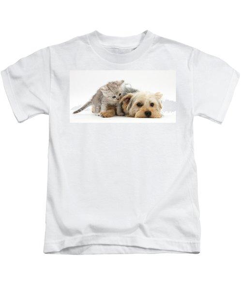 Yorkshire Terrier And Tabby Kitten Kids T-Shirt