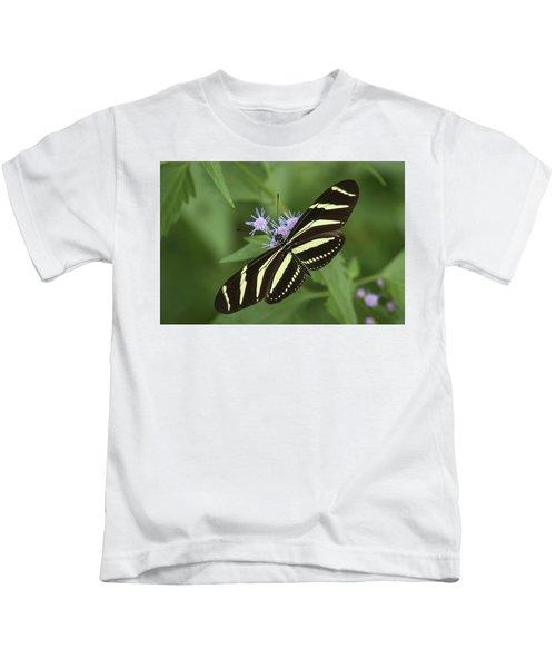 Zebra Heliconian, Heliconius Charithonia Kids T-Shirt