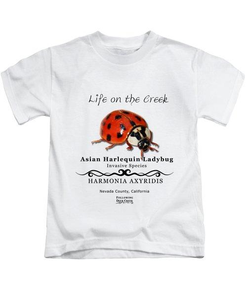 Asian Harlequin Ladybug Kids T-Shirt