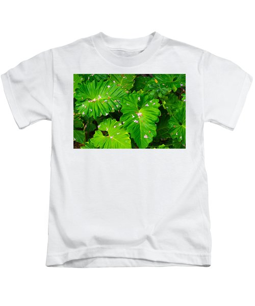 Big Green Leaves Kids T-Shirt