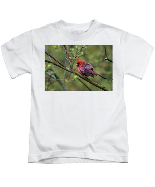 Fluffing Up My Feathers Kids T-Shirt