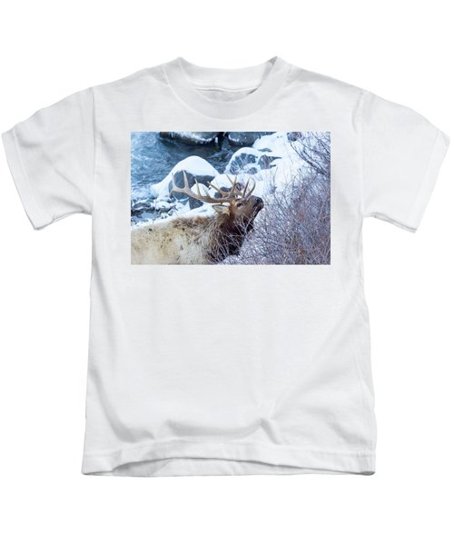 Grazing Elk Kids T-Shirt
