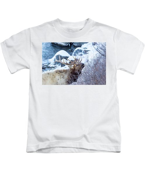 Grazing Elk Kids T-Shirt