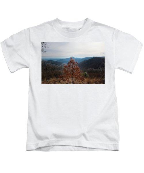 Hoarfrost On Fall Leaves Kids T-Shirt
