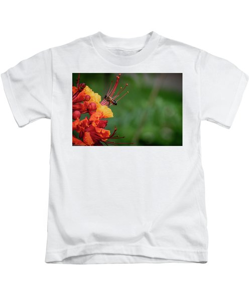 Honey Bee Extraction Kids T-Shirt