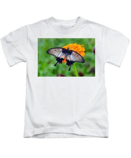 Kite Swallowtail  Kids T-Shirt