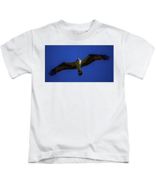 Osprey Glide In Blue Kids T-Shirt