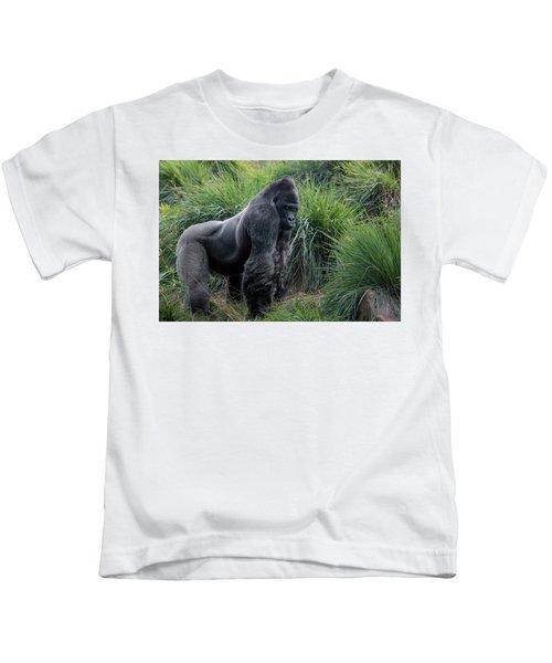 Silverback Stare 1806 Kids T-Shirt