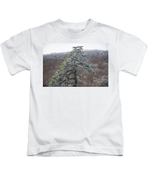 Tree With Hoarfrost Kids T-Shirt
