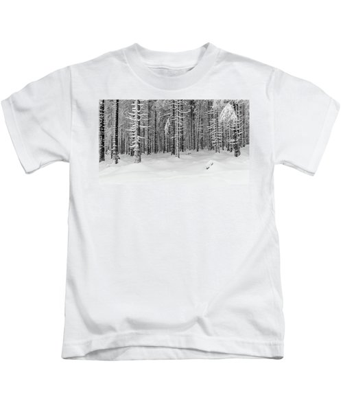 winter forest, Harz Kids T-Shirt