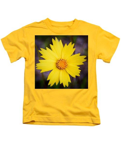 A Little Sunshine Kids T-Shirt