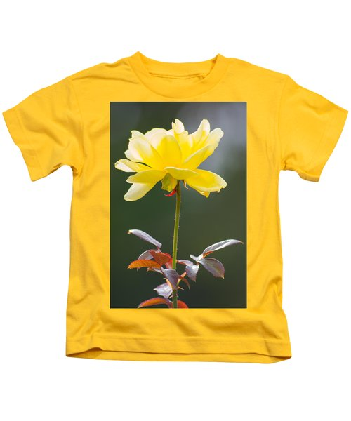 Kids T-Shirt featuring the photograph Yellow Rose by Willard Killough III
