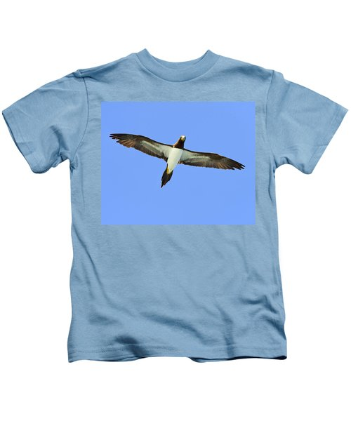 Brown Booby Kids T-Shirt by Tony Beck