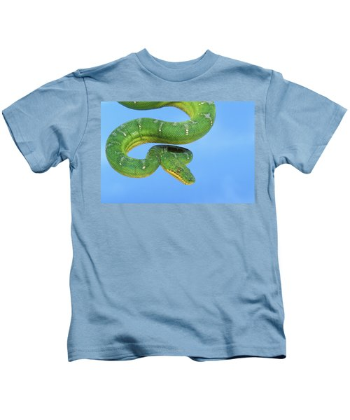 Emerald Tree Boa Corallus Caninus Kids T-Shirt by Thomas Kitchin & Victoria Hurst