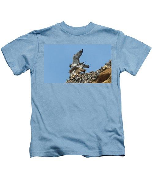 Peregrine Falcons - 4 Kids T-Shirt