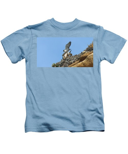Peregrine Falcons - 5 Kids T-Shirt