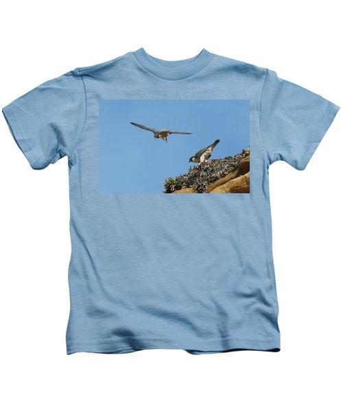 Peregrine Falcons - 6  Kids T-Shirt