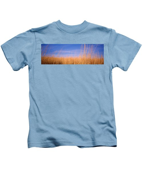 Prairie Grass, Blue Sky, Marion County Kids T-Shirt