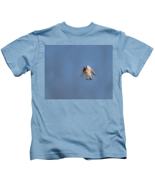 Coming In For A Landing Kids T-Shirt