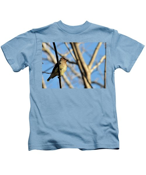 Cedar Wax Wing Kids T-Shirt by David Arment