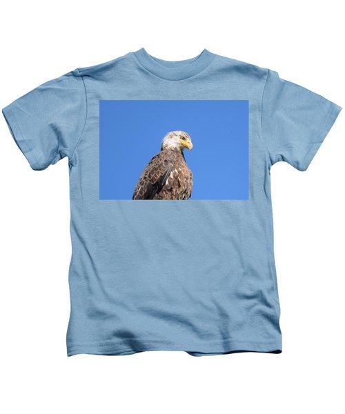 Bald Eagle Juvenile Perched Kids T-Shirt