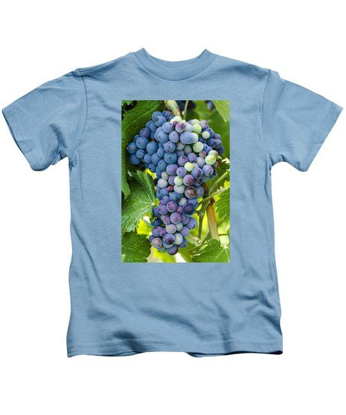 Red Wine Grapes Kids T-Shirt