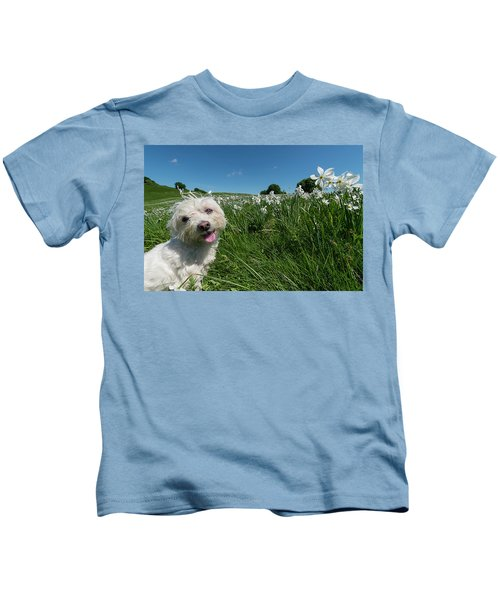 Blooming Daffodils In The Antola Park With Maltese II Kids T-Shirt