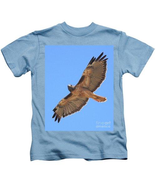 Red Tailed Hawk In Flight Kids T-Shirt