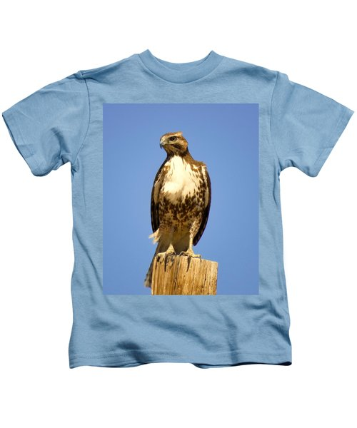 Red-tailed Hawk On Post Kids T-Shirt