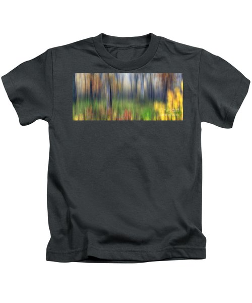 0904 Fall Abstract - Starved Rock Kids T-Shirt