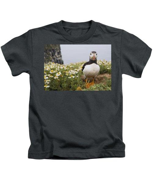 Atlantic Puffin In Breeding Plumage Kids T-Shirt by Sebastian Kennerknecht
