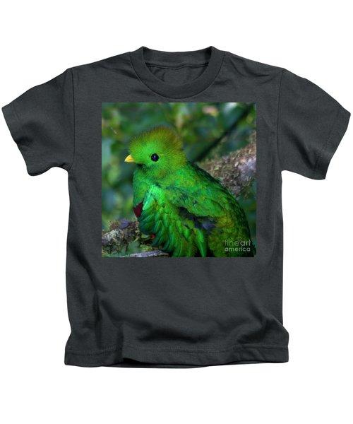 Quetzal Kids T-Shirt
