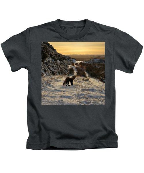 The Pine Marten's Path Kids T-Shirt
