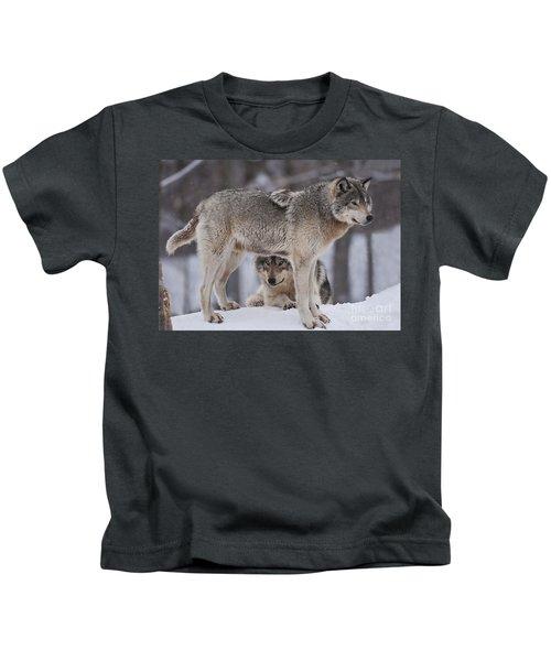 Timber Wolves  Kids T-Shirt