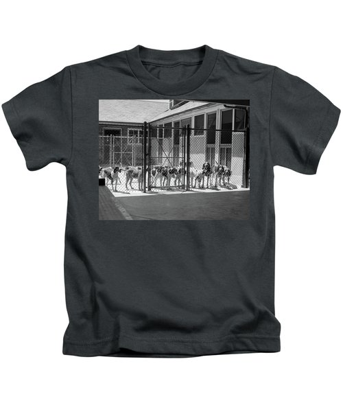 1930s Kennel Yard Full Of Foxhound Dogs Kids T-Shirt