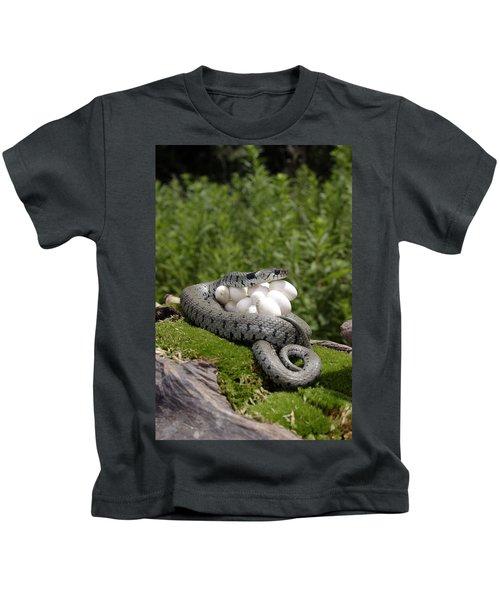 Grass Snake With Eggs Kids T-Shirt