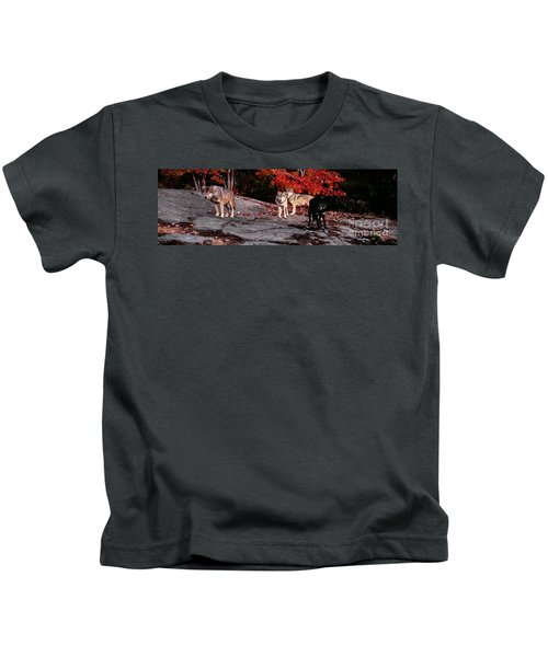 Timber Wolves Under A Red Maple Tree - Pano Kids T-Shirt