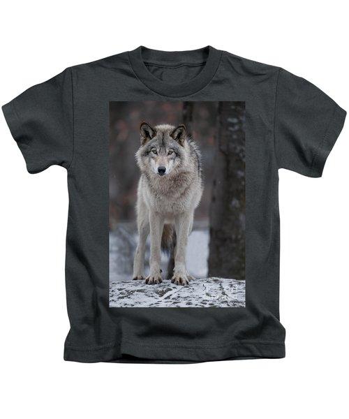 Timber Wolf  Kids T-Shirt