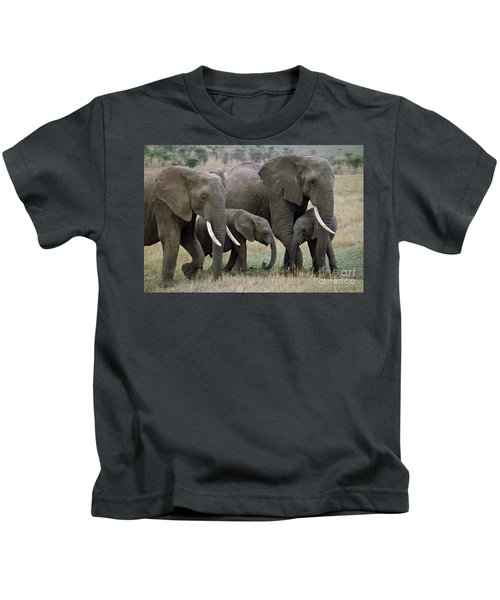 African Elephant Females And Calves Kids T-Shirt