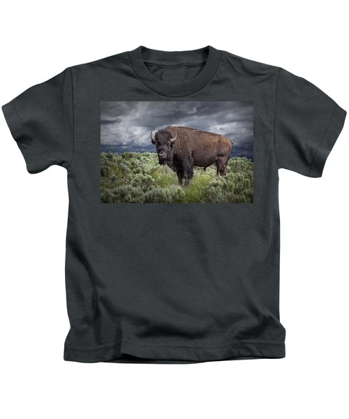 American Buffalo Or Bison In Yellowstone Kids T-Shirt