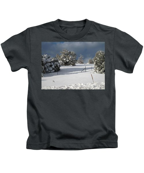 Arizona Snow 3 Kids T-Shirt