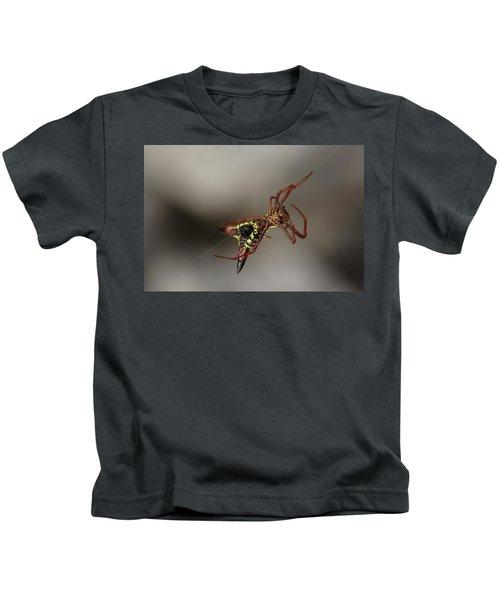 Arrow-shaped Micrathena Spider Starting A Web Kids T-Shirt