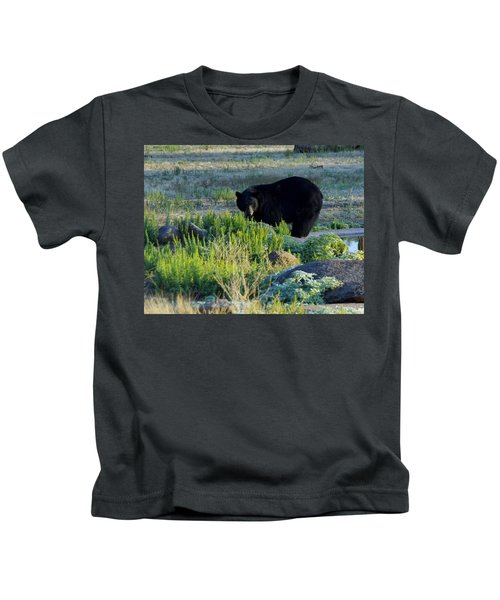 Bear 3 Kids T-Shirt