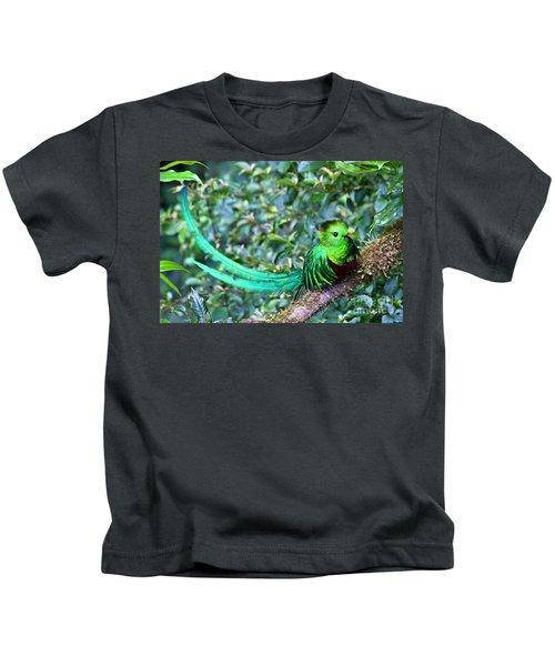 Beautiful Quetzal 3 Kids T-Shirt