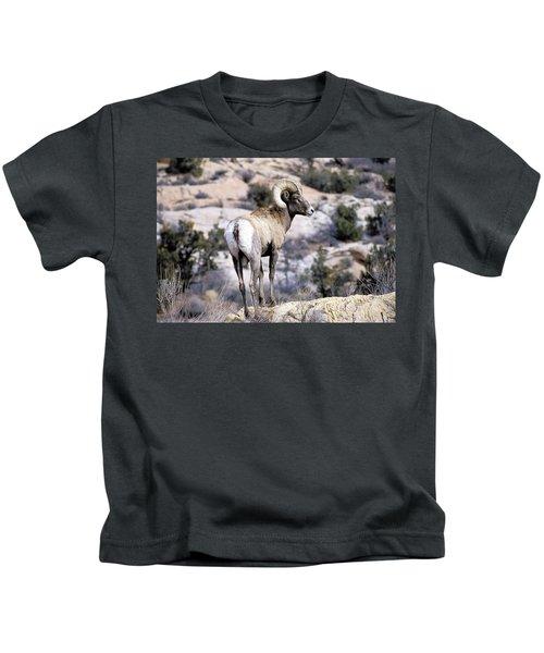 Big Horn Sheep Kids T-Shirt