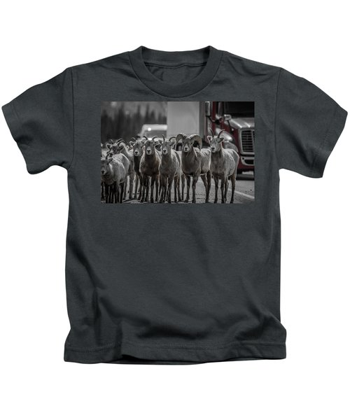 Big Horn Sheep Road Block Kids T-Shirt